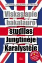 Rytis Vitkauskas, Vilius Pavilionis, Justas Povilėnas - Viskas apie bakalauro studijas Jungtinėje Karalystėje