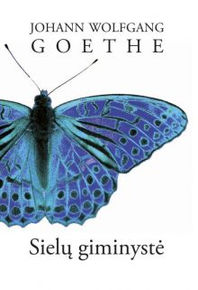 Johann Wolfgang Goethe - Sielų giminystė