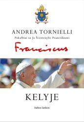Andrea Tornielli - Kelyje: pokalbiai su Jo Šventenybe Pranciškumi