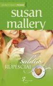 Susan Mallery - Saldūs rūpesčiai. TRYS SESERYS. 3 knyga